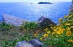 Spring in Sardinia - Sardinia, Italy