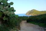 Spring in Sardinia - Sardinia, Italy (1)