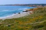 Spring in Sardinia - Sardinia, Italy (4)