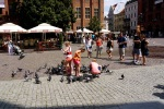 People feeding the birds on Old Town square - Torun, Poland (12)