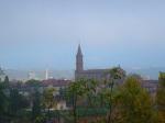 St. Madeleine Church, taken through branches - Albi, France