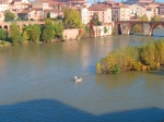 A small fishing boat on the River Tarn - Albi, France (81)