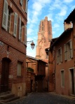 Traditional houses with tower of Albi Cathedral in the background - Albi, France (1)