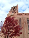 Albi Cathedral with blossoming tree in the foreground - Albi, France (2)