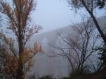 A very misty Pont Vieux - Albi, France