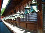 Traditional decorative lanterns at Kasuga Grand Shrine - Nara, Japan (1)