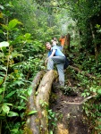 Hiking in the rainforest, posing on a fallen tree - Cameron Highlands, Malaysia (17)