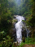 The heavily polluted Robinson Falls - Cameron Highlands, Malaysia (21)