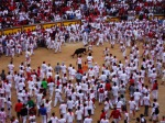 Crowds taunt a young bull, as part of the morning festivities, taken inside Pamplona Bullring - San Fermín - Pamplona, Spain (26)