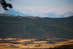 The foothills of the Pyrenees and higher peaks in the background - Sos del Rey Catolico, Spain