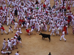 San Fermín (running of the bulls), Pamplona, Spain