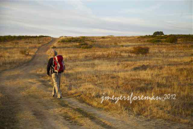 Leaving La Virgen del Camino, Spain - by Janice Meyers Foreman, Walking the Camino de Santiago