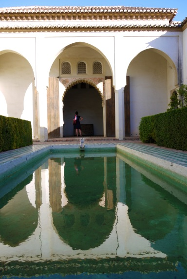 Reflective pool inside Malaga Castle - Malaga, Spain (19)