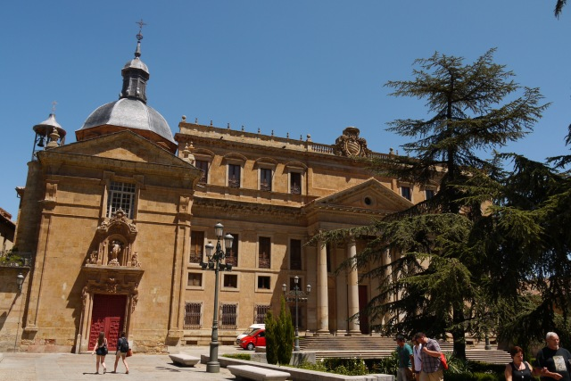 The main façade of Anaya Palace, on Anaya square - Salamanca, Spain (44)