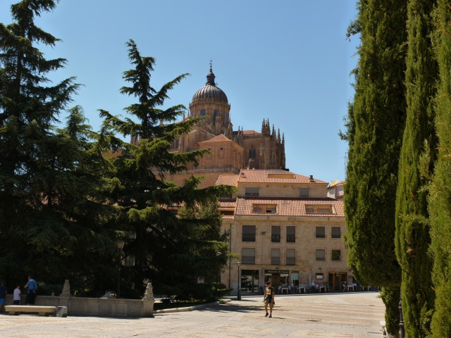 Long range shot of New Cathedral, taken from plaza in front of San Esteban Convent - Salamanca, Spain (89)