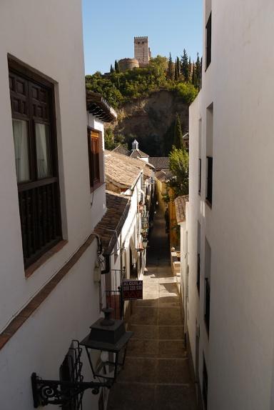 Granada, Spain  (148) - The Palacios Nazaríes high on the hill as seen from Placeta de Toqueros