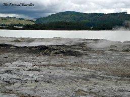Guest Post: Rotorua For Free – by Carol Sherritt (The Eternal Traveller)