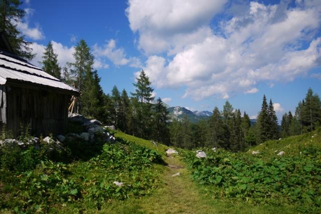 Our hike to Pršivec, Julian Alps, Bohinj, Slovenia - mountain hut