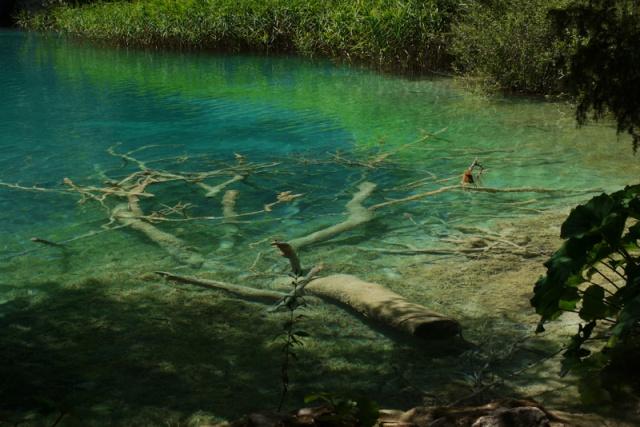 Crystal clear green water in Plitvice, Croatia