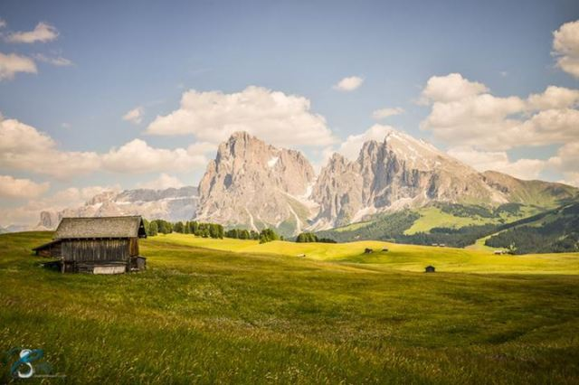 Chiara Salvadori - Alpe di Siusi, Dolomites, Italy