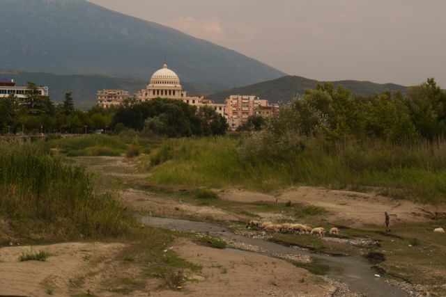 Shepherd crossing the river Osum and the dome of the Albanian University in the background Berat, Albania
